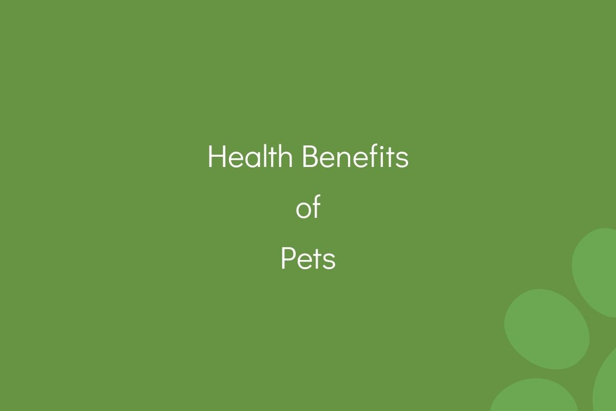 Health-Benefits-of-Pets