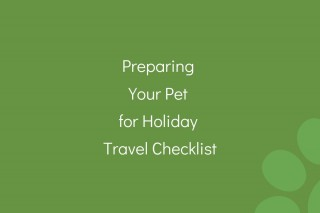 Preparing-Your-Pet-for-Holiday-Travel-Checklist
