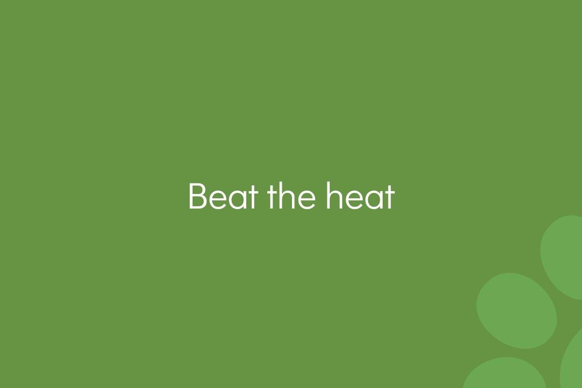 Beat-the-heat-