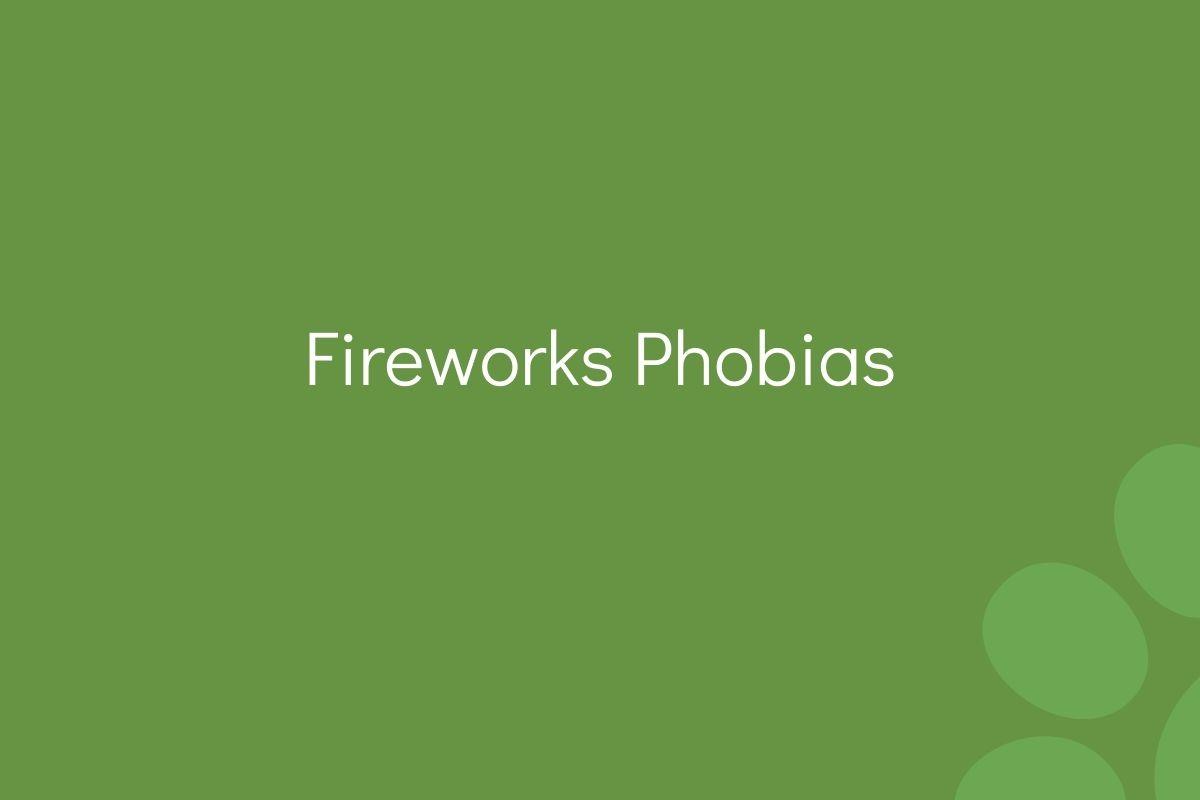 Fireworks-Phobias